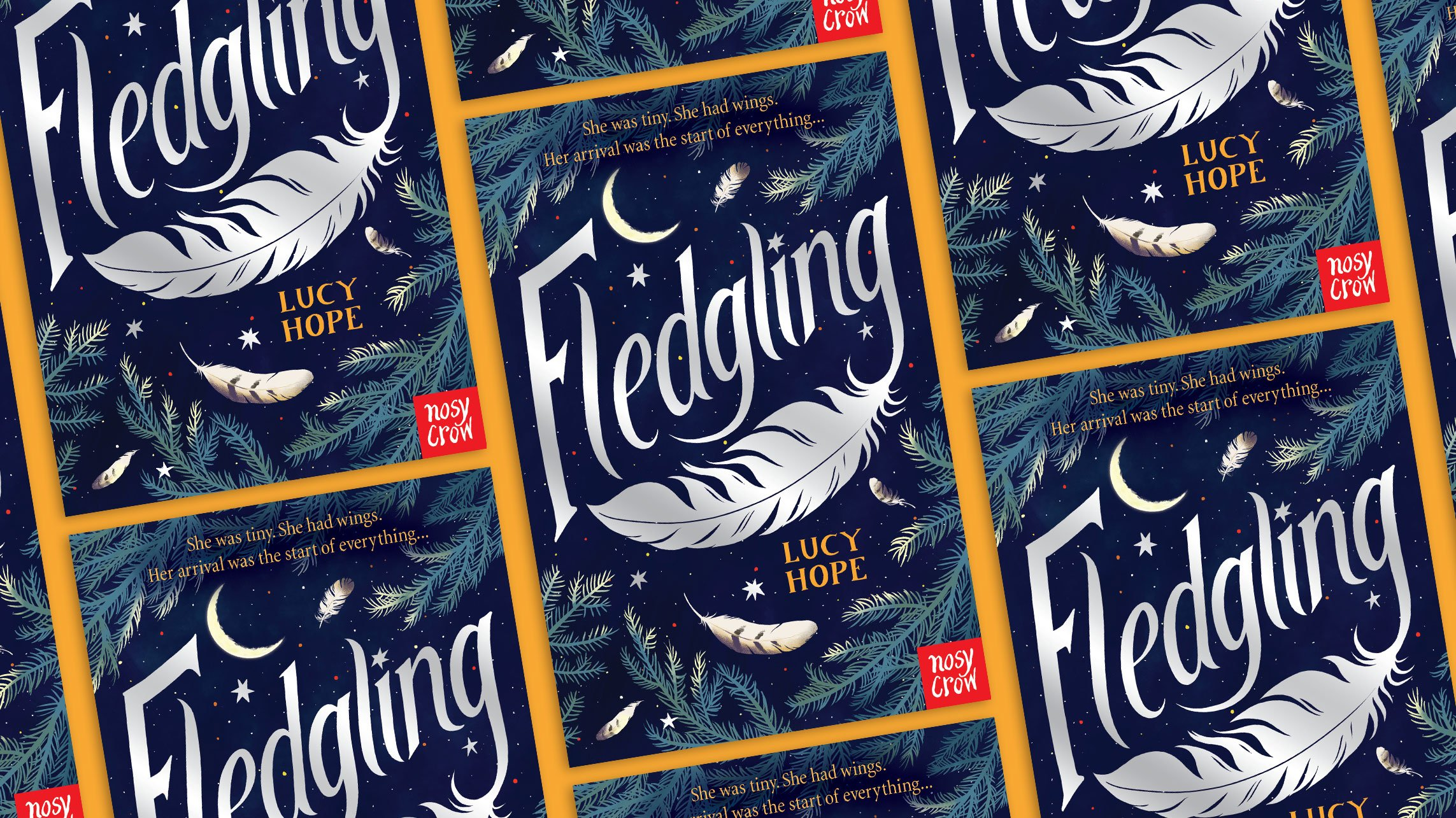 Fledgling by Lucy Hope